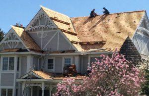 roofing toronto